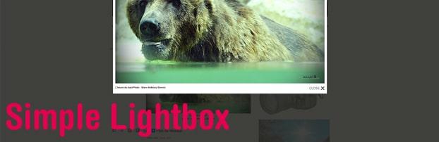 Extension WordPress Simple Lightbox