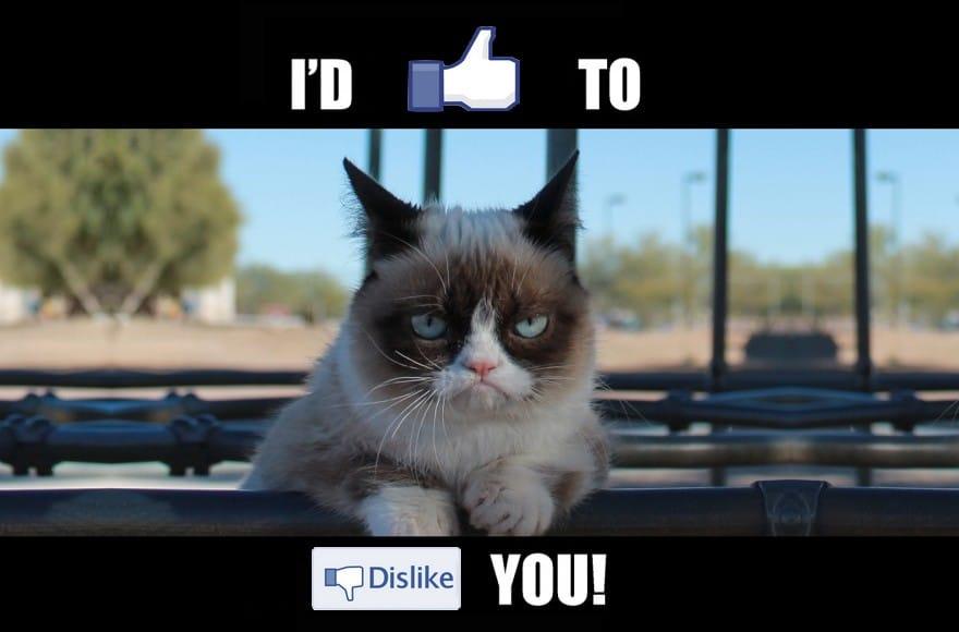 Grumpy Cat n'est pas content sur Facebook