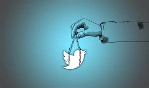 La taille parfaite pour une image Twitter