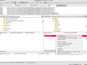 Récupérer les fichiers de traduction du template dans le FTP