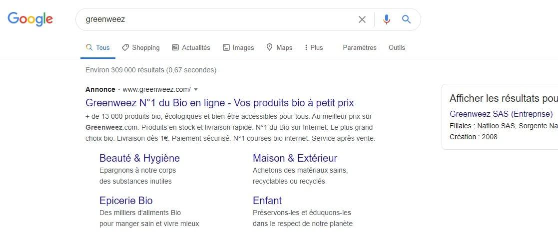 capture écran moteur de recherche Google : annonce textuelle Google Ads