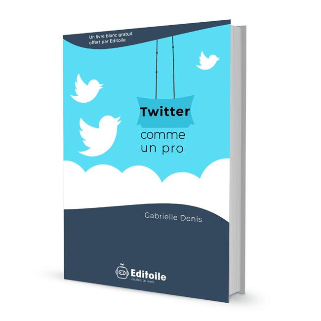couverture livre blanc Twitter comme un pro