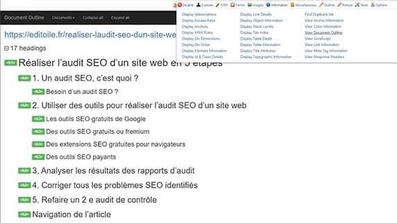 capture d'écran de l'extension Web Developer en action